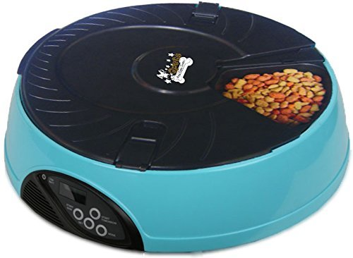 qpets 6 meal feeder review