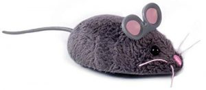 hexbug mouse toy