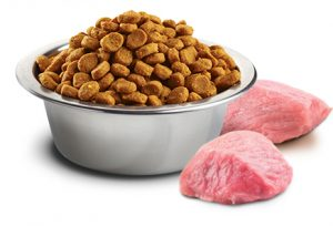 different proteins in dry cat food brands