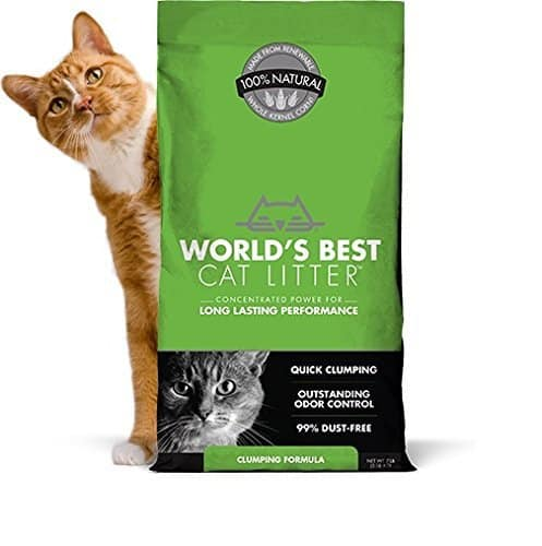 Best Clumping Cat Litter For Multiple Cats 2017 Cats Are