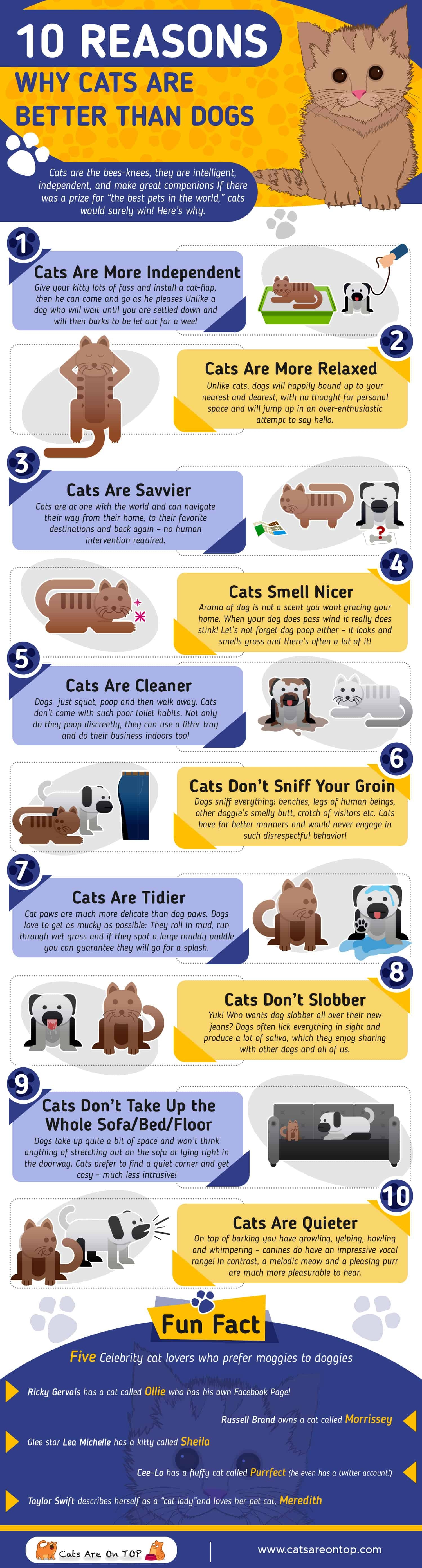 facts about why dogs are better than cats